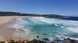 Bondi Beach Sydney Australia Free Download Image