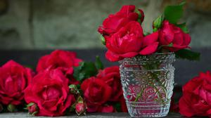 Red Rose In Glass Vase Free HD Image