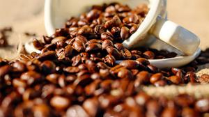 Shallow Focus Of Coffee Beans In White Cup Free HD Image