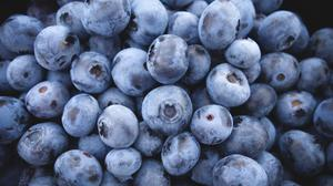 Blueberries Fruit Hd Free HQ Image