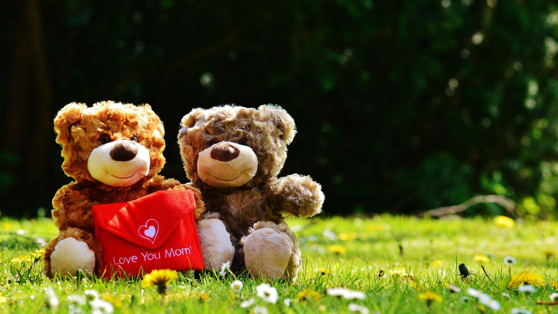 loved one,teddy bear,toy,love,teddy,making love,mammy,bear,mum,momma,shimmy,stand,mom,conduct,dear,you