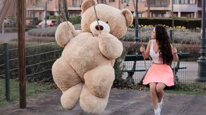 Big Teddy Bear Free Download Image