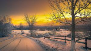 Golden Sunset View In Winter Wallpaper Download Free