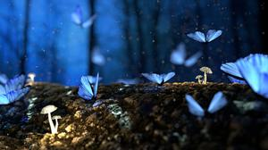 Butterflies Fantasy Free HQ Image
