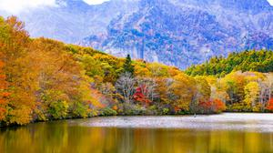 Japan Togakushi Lake Mountains Trees In Autumn Download HD Wallpaper