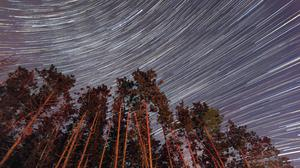 Trees, Night, Star Trail Free Transparent Image HD