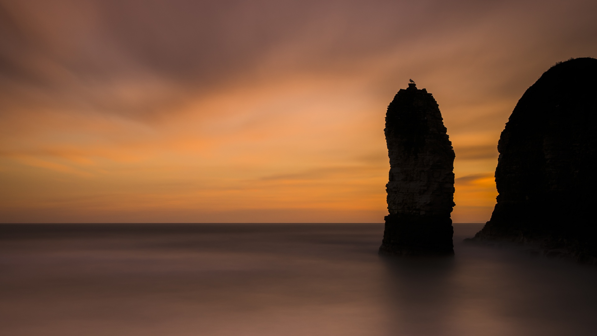 england,unitedkingdom,eastyorkshire,straits,flamboroughhead,flock,slew,sunrise,dawn,gull,longexposure,good deal,cockcrow,head,nature,boss,imagelogger,flamborough,stack,samsung,universe,chief,seascape,whole slew